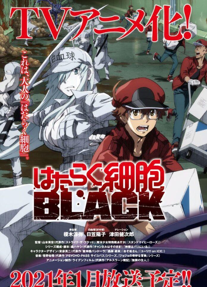 El anime Hataraku Saibou Black revela su staff y una imagen promocional